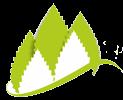 Проект «Создание и продвижение электронного ресурса «Экология и природа Красногвардейского района»